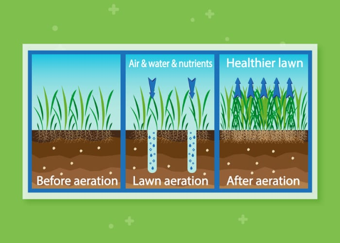 The benefits of aerating as a graphic for a piece on Trugreen Prices and Review