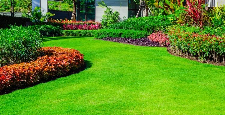 Featured image of a TruGreen Review featuring Front yard, landscape design With multicolored shrubs intersecting with bright green lawns Behind the house is a modern, garden care service, green grass with a beautiful yard for the background.