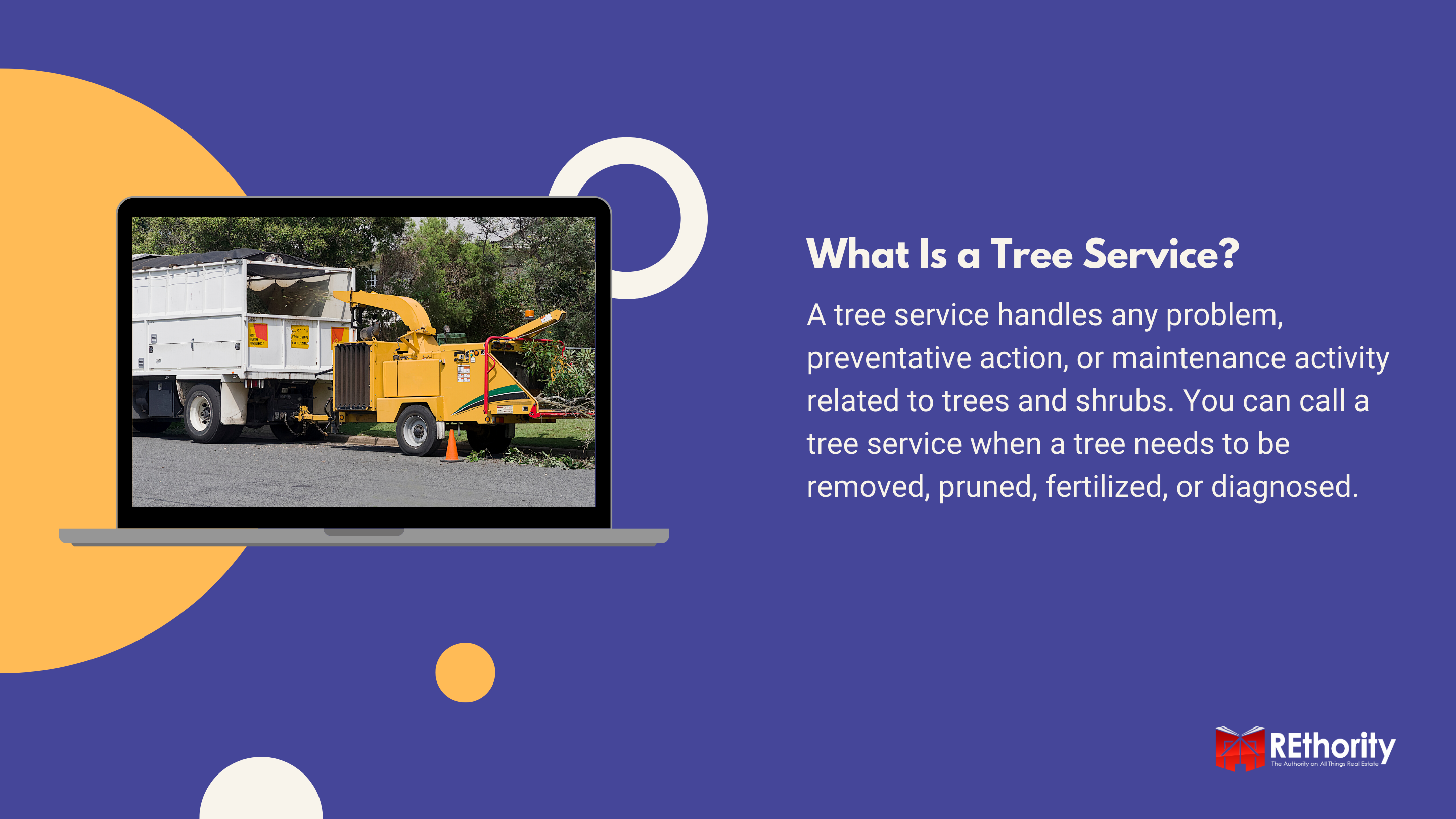 What Is a Tree Service near me graphic explaining the things that a service like this does