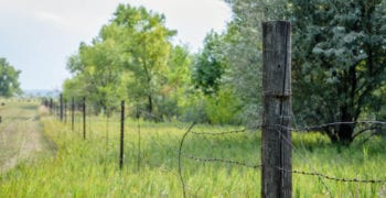 old barbed wire fence on weathered wood post on edge of farm property as an image for a piece on property lines