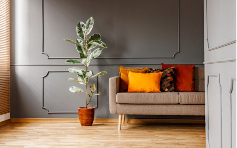 Brown couch in front of dark gray wall panels with orange and red pillows