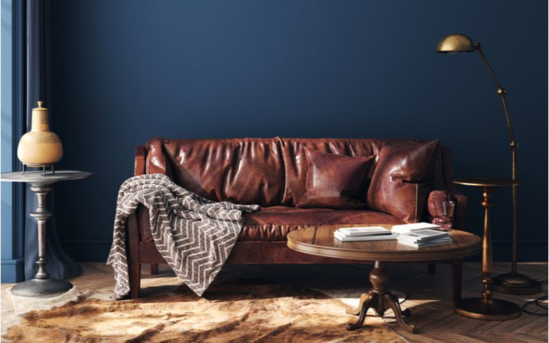 Dark brown couch in a living room idea with a royal blue wall and a patterned grey blanket
