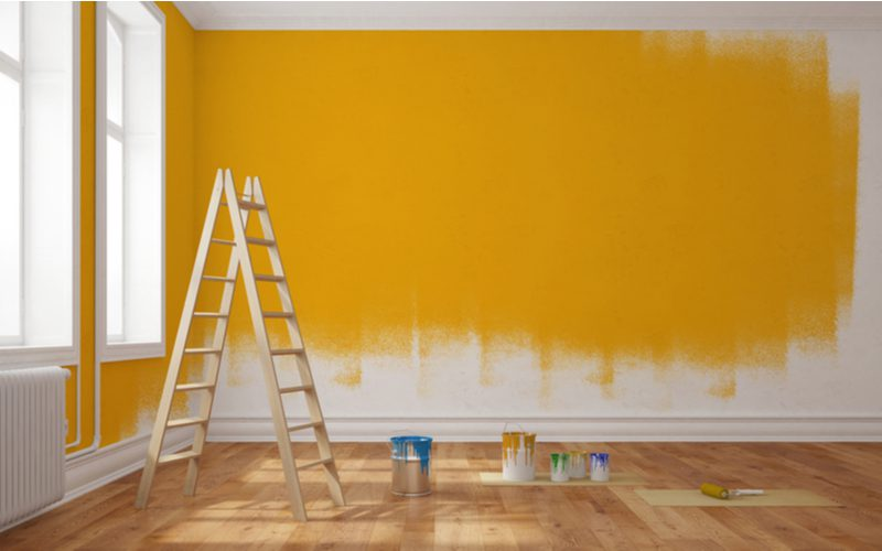 Photo of a partially-painted orange wall for a piece on types of paint