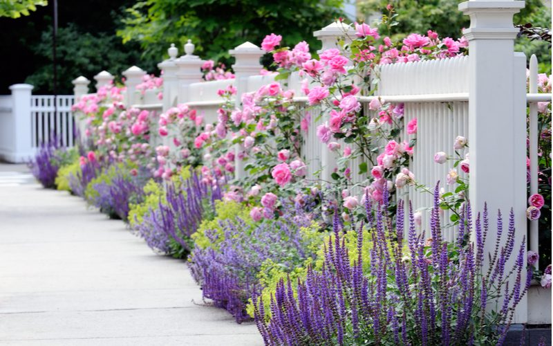 Flower bed ideas that uses Utilize Climbing Flowers to Hang Over Your Flower Bed